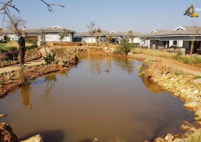 Dam Sealers - Pond Sealed